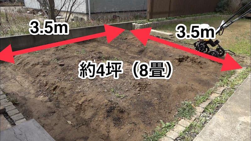 家庭菜園の広さ4坪